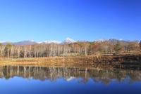 秋のまるやち湖より望む八ヶ岳 11076021112| 写真素材・ストックフォト・画像・イラスト素材|アマナイメージズ