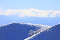 霧ヶ峰高原 霧氷の山並み 11076021128| 写真素材・ストックフォト・画像・イラスト素材|アマナイメージズ