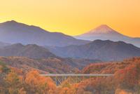 朝日射す紅葉の八ヶ岳高原大橋と富士山