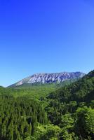鍵掛峠より望む新緑の大山 11076021498| 写真素材・ストックフォト・画像・イラスト素材|アマナイメージズ
