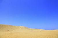 鳥取砂丘 11076021506| 写真素材・ストックフォト・画像・イラスト素材|アマナイメージズ
