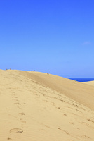 鳥取砂丘と日本海 11076021508| 写真素材・ストックフォト・画像・イラスト素材|アマナイメージズ