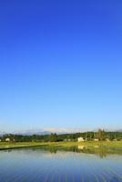富山平野・散居村と北アルプス・立山連峰 11076021525| 写真素材・ストックフォト・画像・イラスト素材|アマナイメージズ