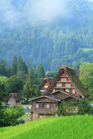 夏の白川郷