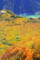 立山黒部 大観峰より紅葉のタンボ平と黒部湖・立山ロープウェイ 11076022126| 写真素材・ストックフォト・画像・イラスト素材|アマナイメージズ