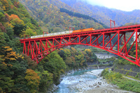 紅葉の黒部峡谷 トロッコ電車と新山彦橋