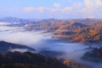 紅葉の大望峠より望む雲海と北アルプス
