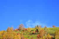 志賀高原 紅葉と青空