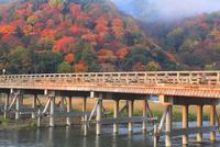 渡月橋と嵐山の紅葉