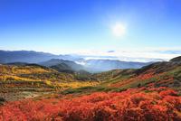 乗鞍エコーラインの紅葉と雲海に太陽