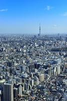 サンシャイン60より東京の街並みとスカイツリー