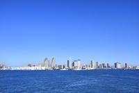 東京湾 晴海埠頭とビル群にスカイツリー