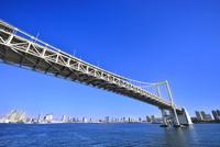東京湾 レインボーブリッジとビル群