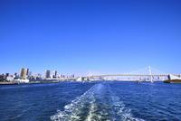 東京湾 レインボーブリッジとビル群に東京タワー