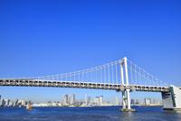 東京湾 レインボーブリッジとビル群にスカイツリー