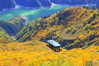 大観峰より紅葉のタンボ平と黒部湖・立山ロープウェイ