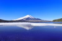 氷結の山中湖と逆さ富士