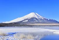 霧氷の山中湖と富士山 11076022735| 写真素材・ストックフォト・画像・イラスト素材|アマナイメージズ