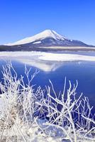 霧氷の山中湖と逆さ富士 11076022736| 写真素材・ストックフォト・画像・イラスト素材|アマナイメージズ