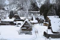 雪の五箇山 菅沼合掌造り集落