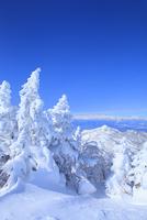 志賀高原 横手山の樹氷 11076023258| 写真素材・ストックフォト・画像・イラスト素材|アマナイメージズ