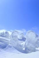 蔵王 地蔵山の樹氷 11076023333| 写真素材・ストックフォト・画像・イラスト素材|アマナイメージズ