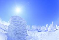蔵王 地蔵山の樹氷と太陽