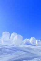 蔵王 地蔵山の樹氷 11076023380| 写真素材・ストックフォト・画像・イラスト素材|アマナイメージズ