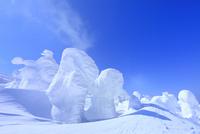 蔵王 地蔵山の樹氷
