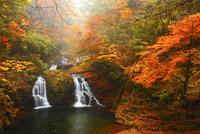 赤目四十八滝・荷担滝と紅葉