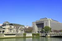 中之島 日本銀行・大阪市役所と淀屋橋 11076023800| 写真素材・ストックフォト・画像・イラスト素材|アマナイメージズ