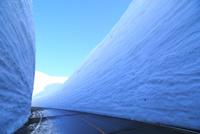 立山黒部 雪の大谷 11076023963| 写真素材・ストックフォト・画像・イラスト素材|アマナイメージズ