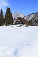 冬の白川郷 11076024279| 写真素材・ストックフォト・画像・イラスト素材|アマナイメージズ