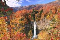 白水滝と紅葉