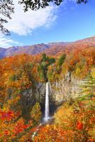 白水滝と紅葉 11076024284  写真素材・ストックフォト・画像・イラスト素材 アマナイメージズ
