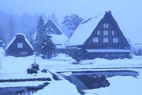 冬の白川郷・降雪 11076024317| 写真素材・ストックフォト・画像・イラスト素材|アマナイメージズ