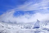 蔵王 地蔵山の樹氷と樹氷原