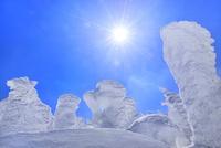 蔵王 地蔵山の樹氷と太陽 11076024782| 写真素材・ストックフォト・画像・イラスト素材|アマナイメージズ
