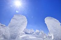 蔵王 地蔵山の樹氷と太陽 11076024783| 写真素材・ストックフォト・画像・イラスト素材|アマナイメージズ