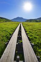 尾瀬ヶ原 木道と燧ヶ岳に太陽