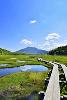 尾瀬ヶ原 池塘と木道に燧ヶ岳