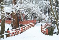 降雪の奈良公園 水谷橋