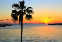 大阪南港ATCより望む大阪湾と夕日 11076025008| 写真素材・ストックフォト・画像・イラスト素材|アマナイメージズ