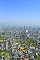 あべのハルカスより四天王寺と大阪の街並み