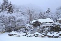 雪の大窪寺本堂