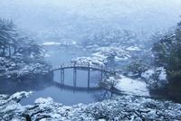 飛来峰から望む雪の栗林公園・偃月橋