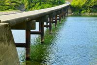 岩間沈下橋と四万十川