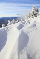 剣山の樹氷と風紋