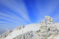 樹氷と剣山山頂を望む 11076025945  写真素材・ストックフォト・画像・イラスト素材 アマナイメージズ