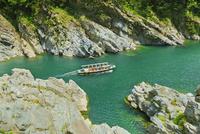 新緑の大歩危峡と遊覧船